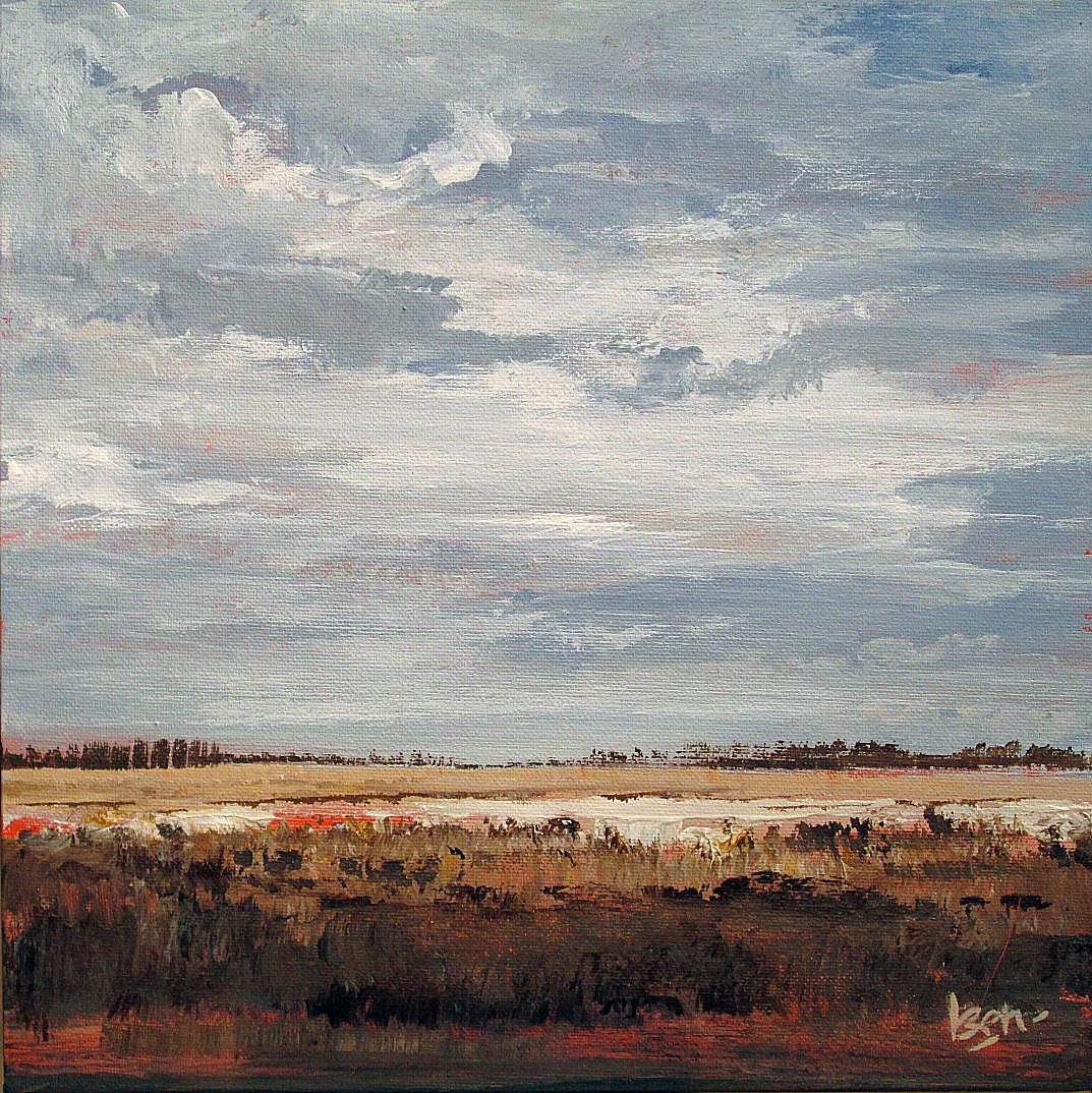 lauwersmeer 30x30 acryl op paneel